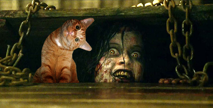 evil dead sequel, oh hai cat, jane levy, book of the dead