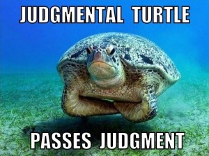 turtle meme, judgment meme, comic con judging