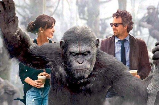 Begin Again vs Dawn of the Planet of the Apes
