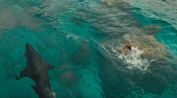 shallows movie, the shallows, shark movies, best shark movies