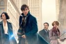 Fantastic Beasts and Where to Find Them vs The Edge of Seventeen