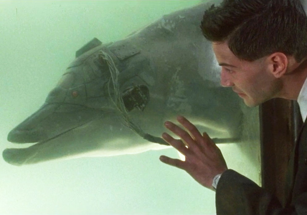dolphin, johnny mnemonic, cyber dolphin, mind reading dolphin, keanu reeves